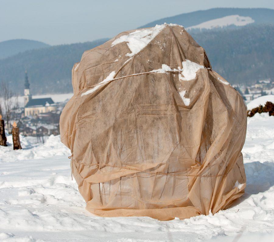 Paillage et voiles d'hivernage
