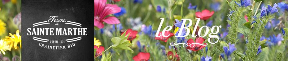 Blog La Ferme de Sainte Marthe